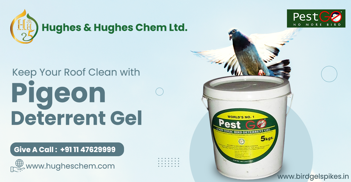 Keep Your Roof Clean with Pigeon Deterrent Gel
