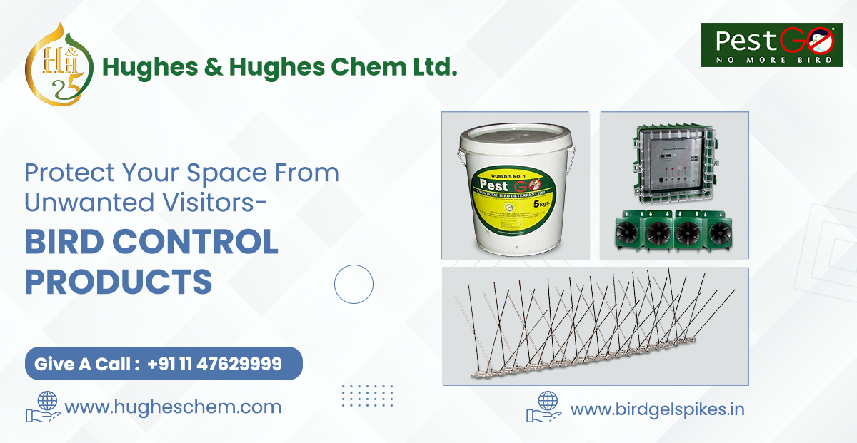 Protect Your Space from Unwanted Visitors- Bird Control Products