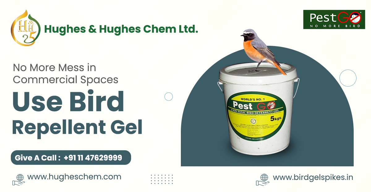 No More Mess in Commercial Spaces: Use Bird Repellent Gel
