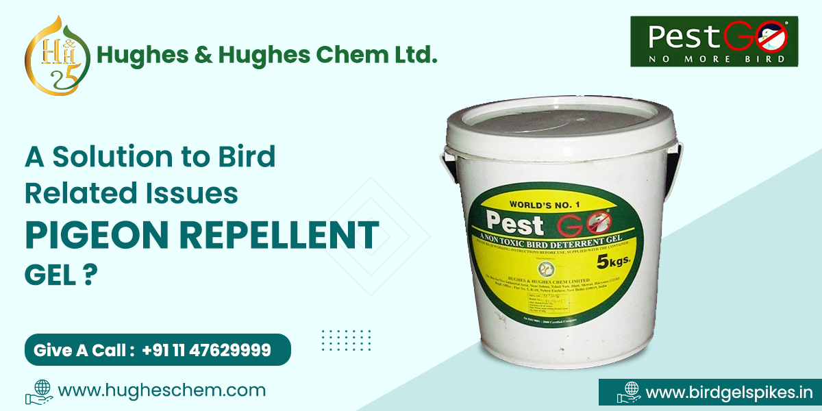 A Solution to Bird Related Issues- Pigeon Repellent Gel