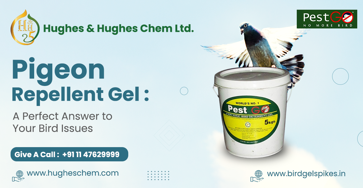 Pigeon Repellent Gel: A Perfect Answer to Your Bird Issues